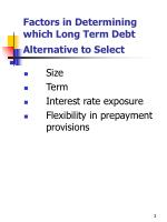 factors in determining which long term debt alternative to select