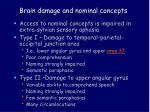 brain damage and nominal concepts