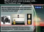 what s in your voice is in your cells the feedback loop