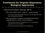 treatments for unipolar depression biological approaches1
