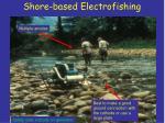 shore based electrofishing