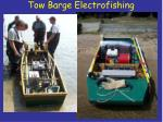 tow barge electrofishing2