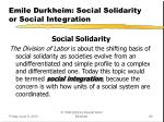 emile durkheim social solidarity or social integration