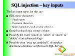 sql injection key inputs