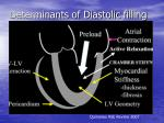 determinants of diastolic filling