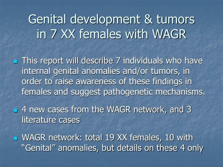 Genital development & tumors