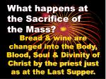 what happens at the sacrifice of the mass