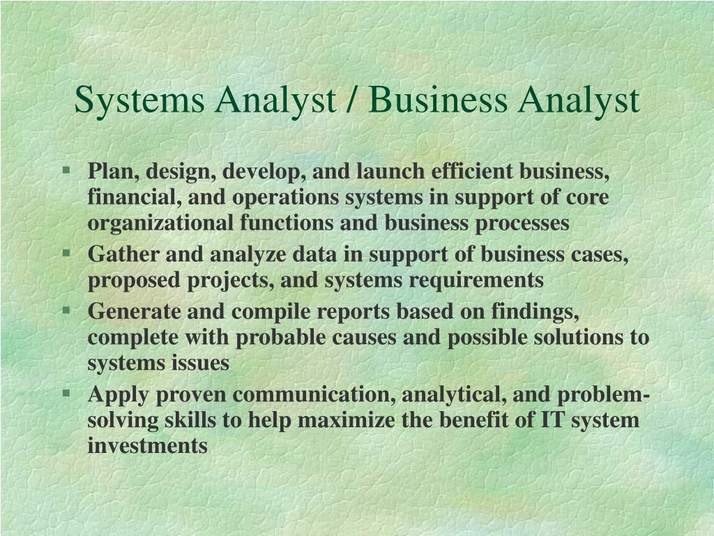 Systems Analyst / Business Analyst