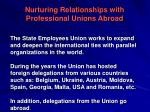 nurturing relationships with professional unions abroad