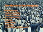 the march of the penguins1