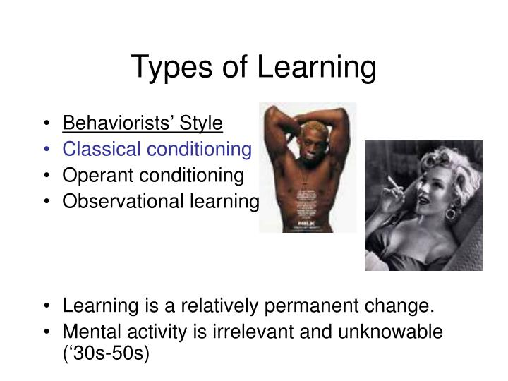 types of learning n.