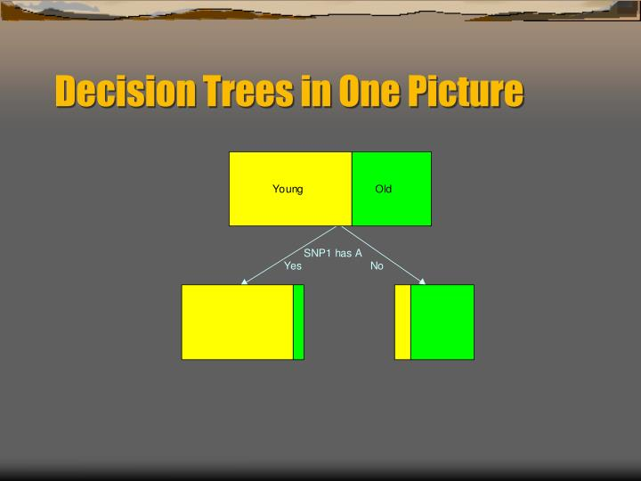 Decision Trees in One Picture