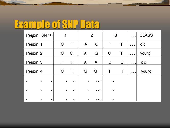 Example of SNP Data