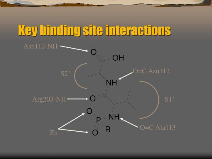 Key binding site interactions