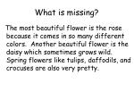 what is missing1