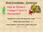 word knowledge sentences