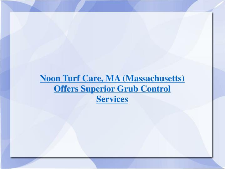 Noon Turf Care, MA (Massachusetts) Offers Superior Grub Control Services
