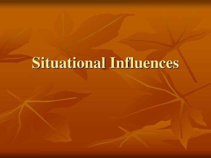 situational influences n.