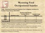wyoming fatal occupational injuries4