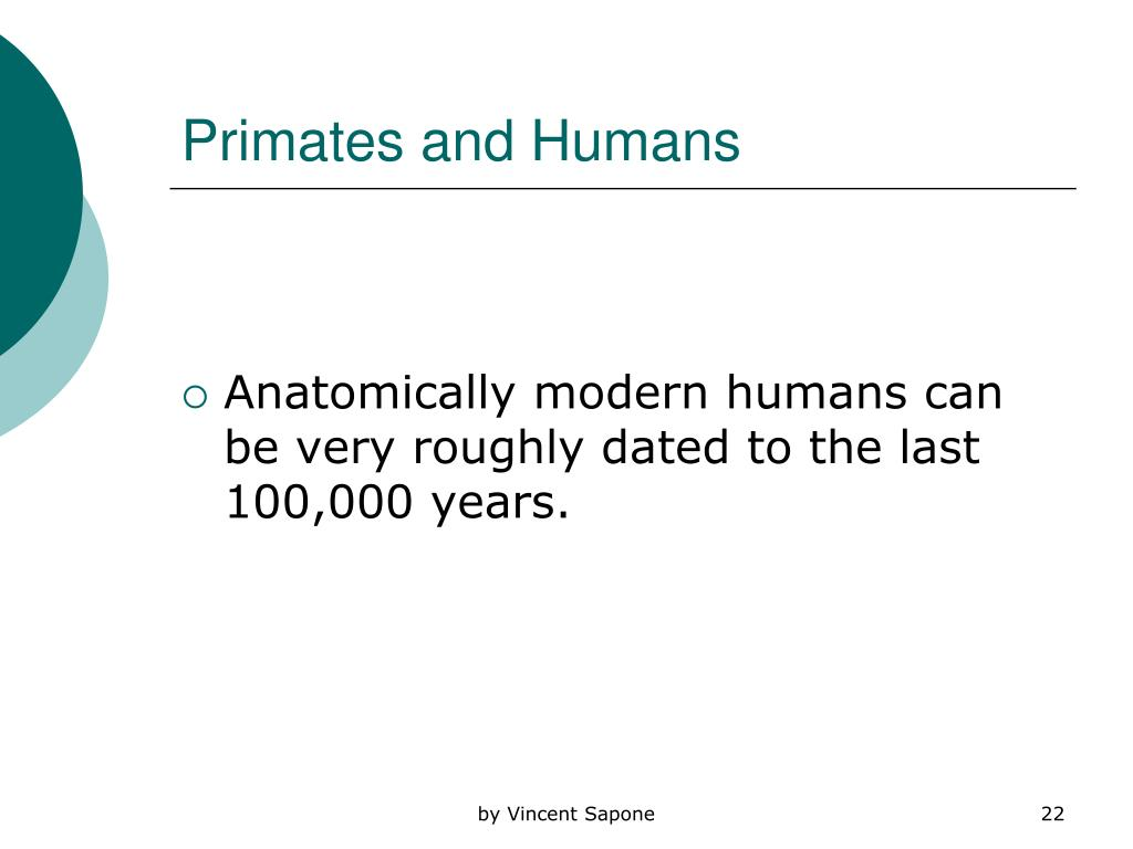 Primates and Humans
