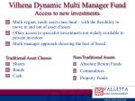 vilhena dynamic multi manager fund access to new investments
