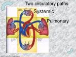 two circulatory paths