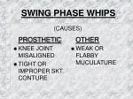 swing phase whips