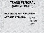 trans femoral above knee