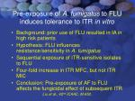 pre exposure of a fumigatus to flu induces tolerance to itr in vitro