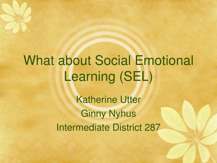 what about social emotional learning sel n.