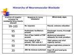 hierarchy of neuromuscular blockade