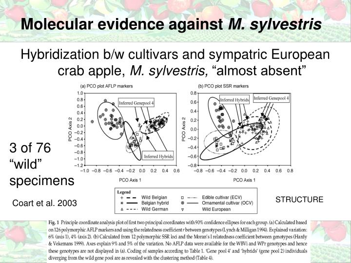 Molecular evidence against