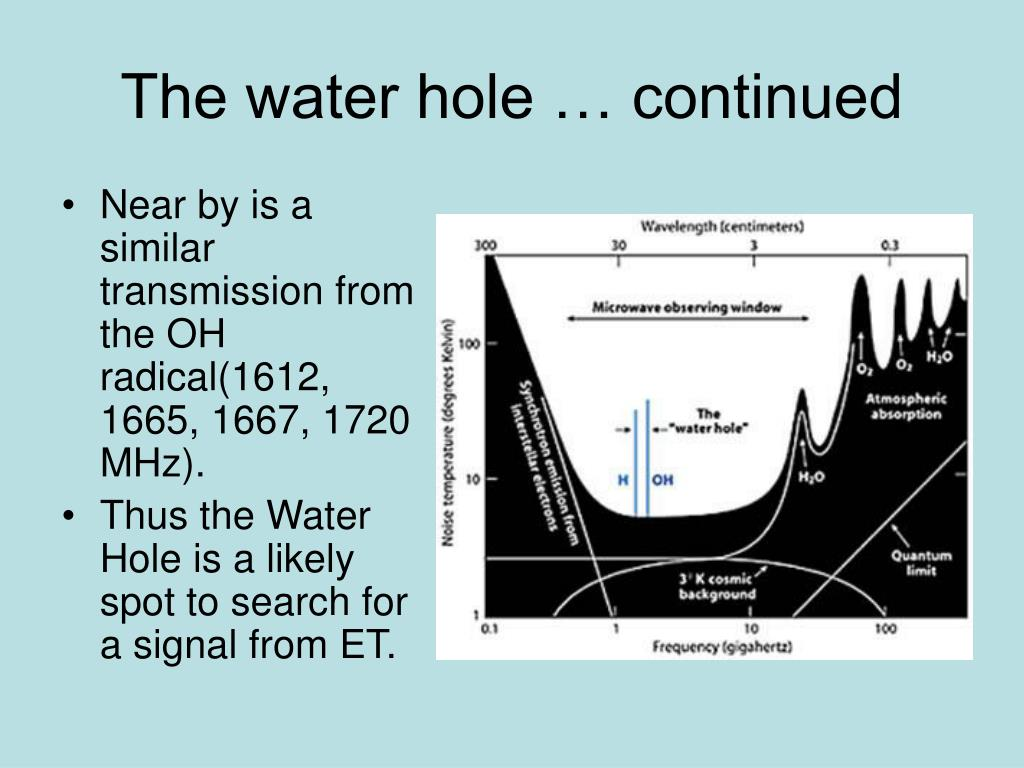 The water hole … continued