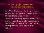 what language disorders reveal about underlying processes