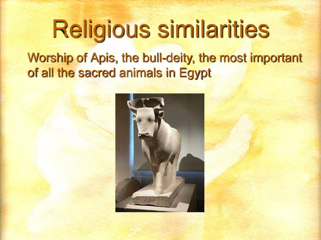 Worship of Apis, the bull-deity, the most important of all the sacred animals in Egypt