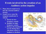 events involved in the creation of an auditory action impulse