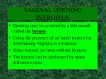 vaginal opening introitus