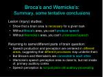 broca s and wernicke s summary some tentative conclusions