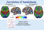 correlates of handedness