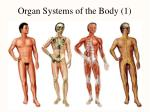 organ systems of the body 1