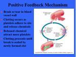 positive feedback mechanism