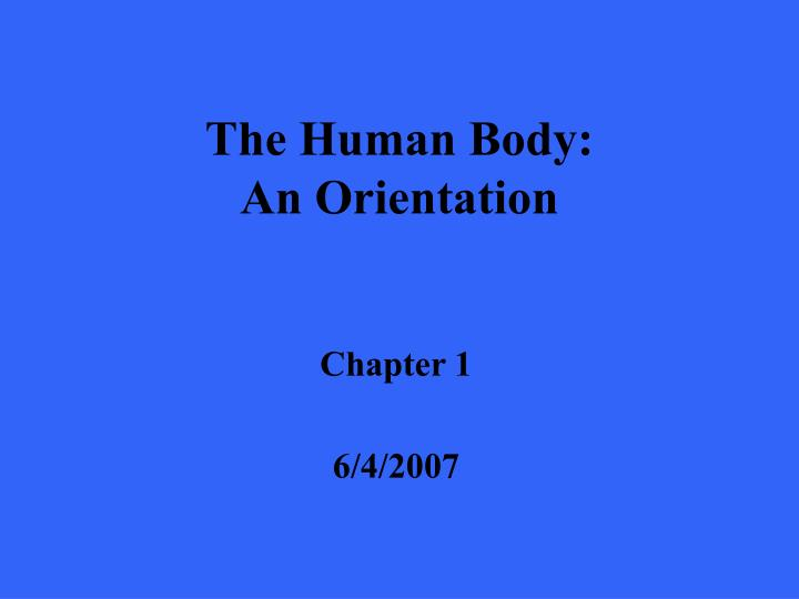 the human body an orientation n.
