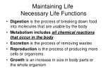 maintaining life necessary life functions4