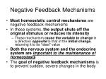 negative feedback mechanisms