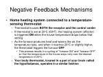 negative feedback mechanisms1