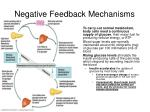 negative feedback mechanisms2