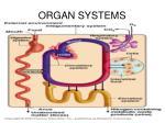 organ systems4