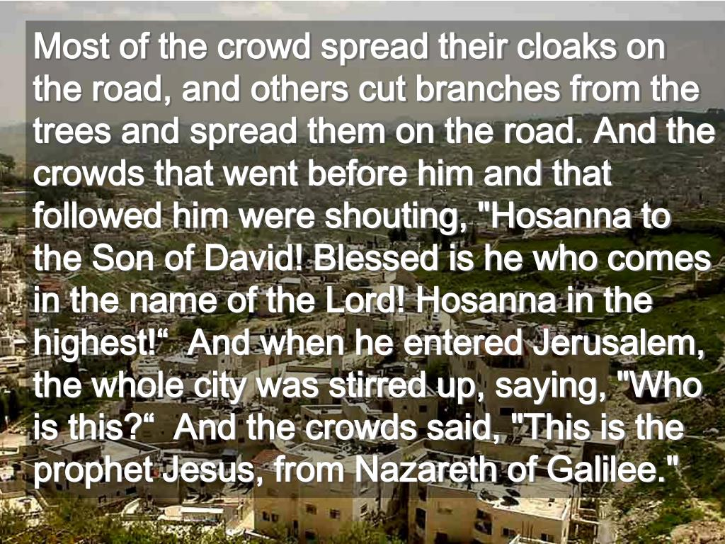"""Most of the crowd spread their cloaks on the road, and others cut branches from the trees and spread them on the road. And the crowds that went before him and that followed him were shouting, """"Hosanna to the Son of David! Blessed is he who comes in the name of the Lord! Hosanna in the highest!""""  And when he entered Jerusalem, the whole city was stirred up, saying, """"Who is this?""""  And the crowds said, """"This is the prophet Jesus, from Nazareth of Galilee."""""""