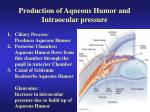 production of aqueous humor and intraocular pressure