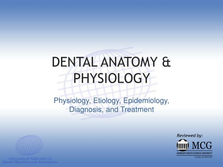 dental anatomy physiology n.
